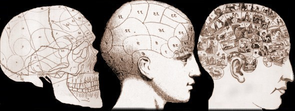 The evolution of phrenological images c. 1800; 1820; 1860.