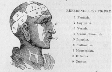 An introduction to phrenology